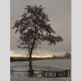 Wetter /Erster Schnee