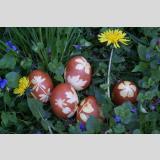 Ostern /Zwiebel-Eier