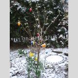 Ostern /Ostereier im Schnee