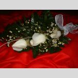 Heiraten /Rosen der Unschuld