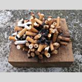 Outdoor /Zigaretten-Igel / 01