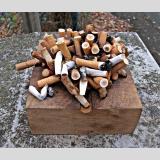Outdoor /Zigaretten-Igel / 02