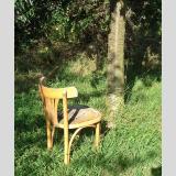 Outdoor /Stuhl im Garten / 02