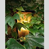 Outdoor /Gartenlampe