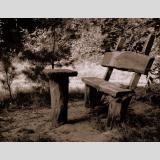Landschaft /Die Waldbank