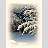 Jahreszeit /Bald wieder frisch