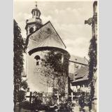 Hildesheim /1000 jähriger Rosenstock