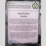 Schilder, Lichtwerbung /Aalschokker Aranka
