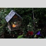 Beleuchtung /Teelicht für Stiefmütterchen