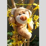 Bärenleben /Frühling ist da!