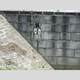 Graffiti /eine kleine Eule
