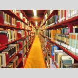 in der Bibliothek /in der Bibliothek