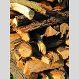 Holz /Feuerholz