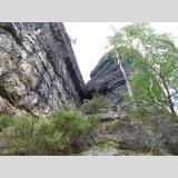 Sächsische Schweiz /auf dem Weg nach oben