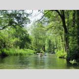 Paddeln und Schwimmen /Paddeln im Spreewald