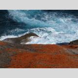 Kraft der Elemente /Stein und Wellen