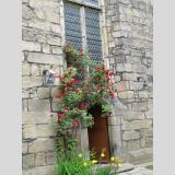 Fenster und Türen /Roseneingang