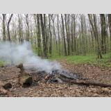 Im Wald /Beginn vom Waldbrand?