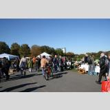 Menschen /Flohmarkt in Bonn