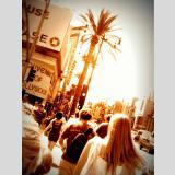 Hollywood /hollywood boulevard