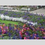 Steine /The Butchart Gardens